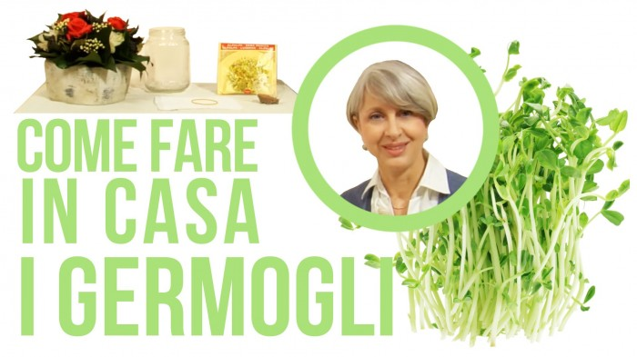 Come fare germogli alfa alfa in casa con germogliatore fai - Come fare profumi in casa ...